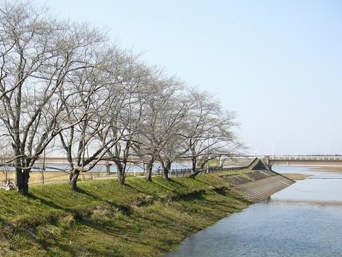20080322.jpg
