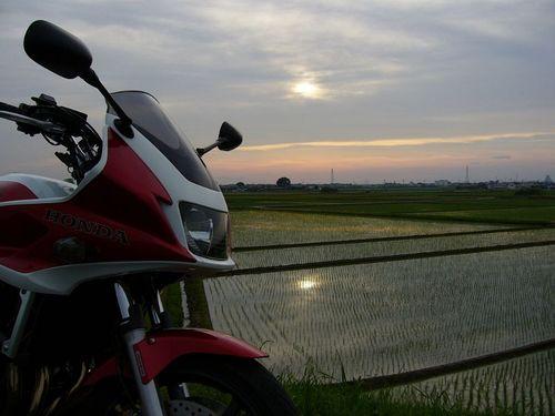 20080525_175035.JPG