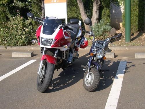 20081230_111122.JPG