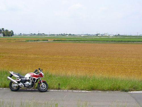 20080607_111011.JPG