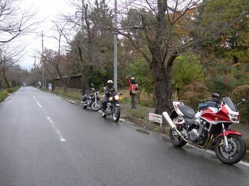 20081112_113735.JPG