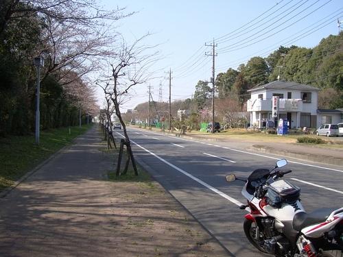 20090330_143102.JPG
